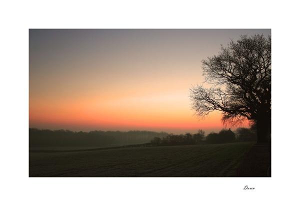 dawn by carlw