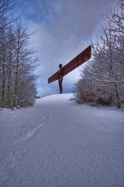Winter Angel II by michaelcombe