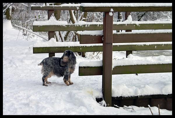 Winter Scenes 1 by itinerario