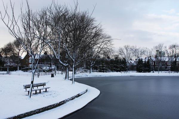 snow scene by tjdup