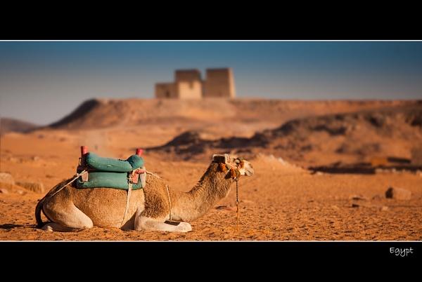 Egypt by stevie