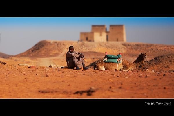 Desert Transport by stevie
