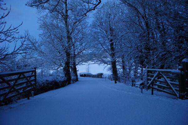 Snowy Morning by jon gopsill