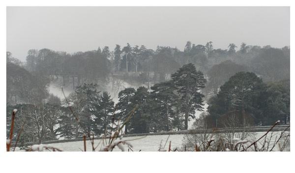 Snowy South Devon by Graysters