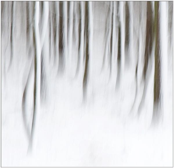Winter Magic by MalcolmM