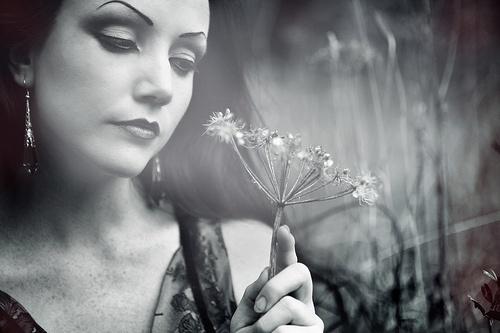 Wishful Dreams by Taya