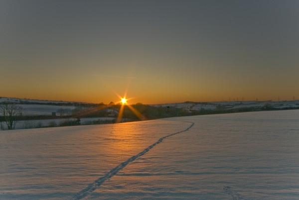 winter dusk by tricky66