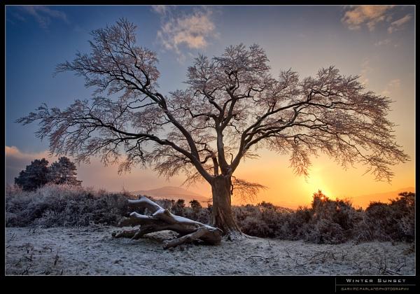 Winter Sunset by garymcparland