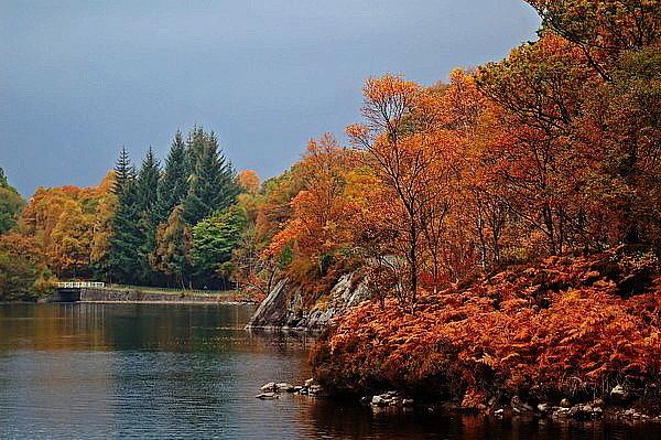 Autumnal Katrine by colmar