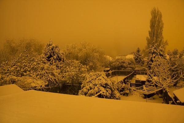 Snowy Back Garden at Night by smartiemart