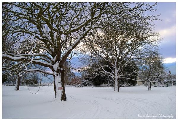 Snow at Dusk by SugarDJ