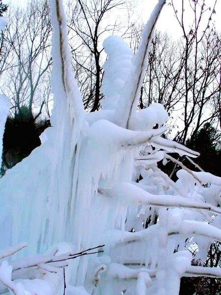 Ice art by xanita