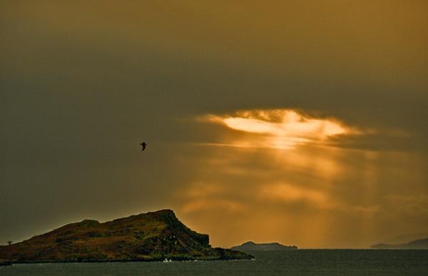 sun-rays by abesad
