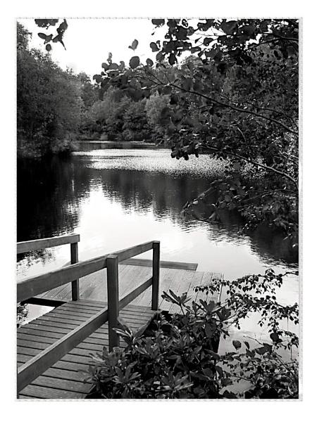 Lakeside by paulmeyer