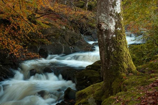 Waterfall at Ganllwyd by edjbartos