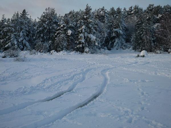 Winter Wonderland 2 by simonshere