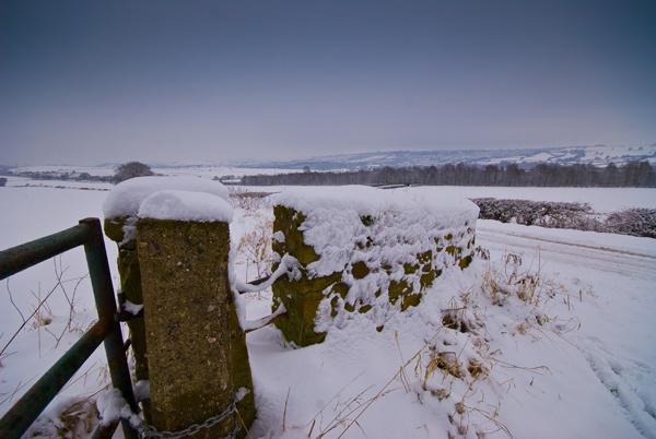 Snowy day by davereet