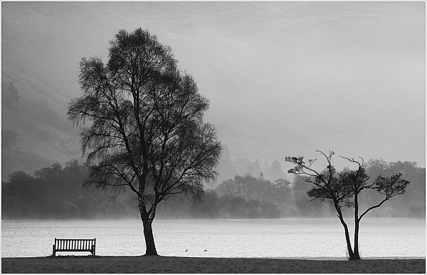 Bench and two trees, Ullswater by malc_c