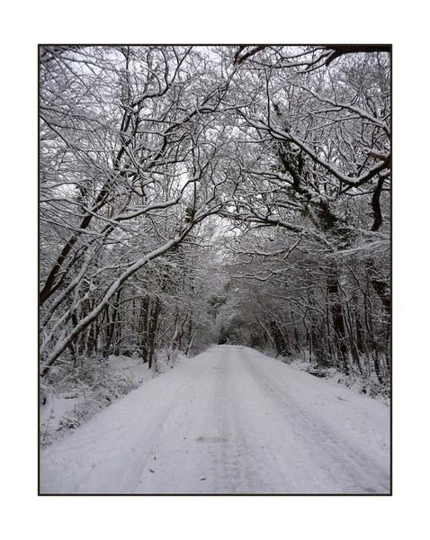Snowy road by balance