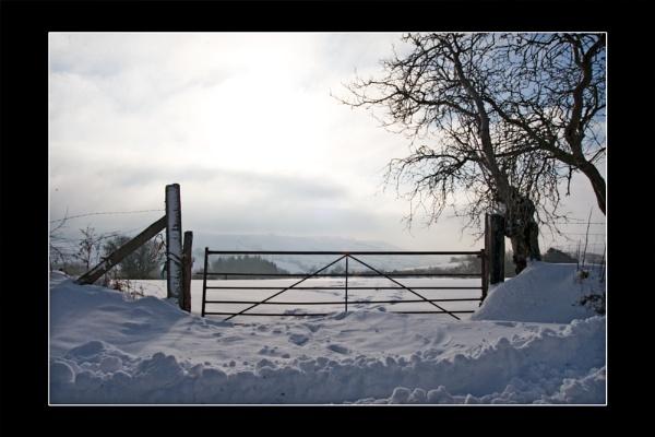 Winter by ABiggs