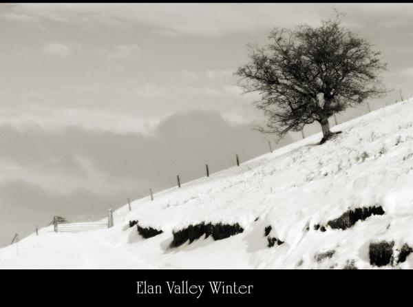 Elan Valley Winter by maroondah