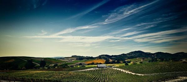 Wine Country-Napa by nturin