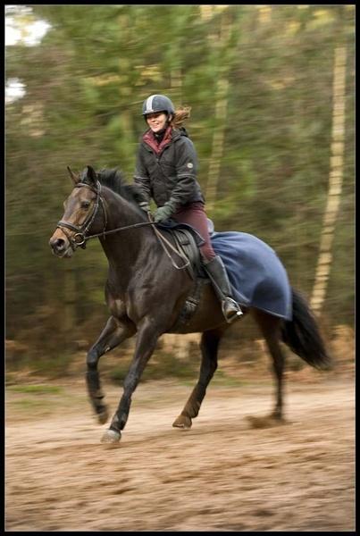 Horsepower by fazzer