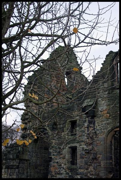 Kirkstall Abbey Ruins by Rob_McG
