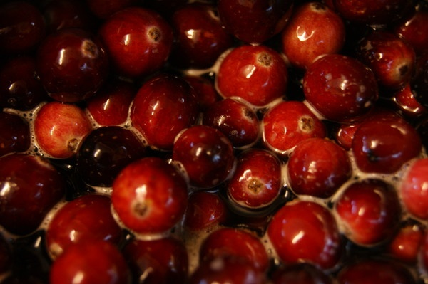 Cranberries by Manni1996