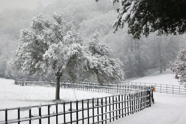 A winters day by Gaz111