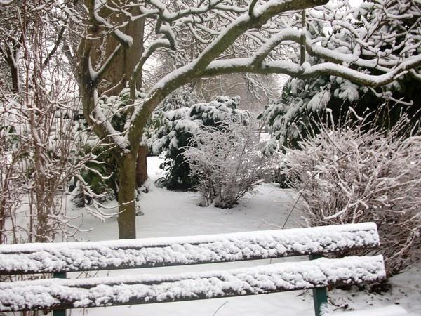 walking in a winter wonderland by Tash_hares