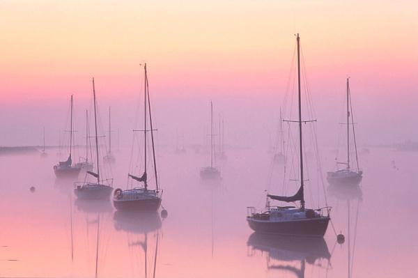 Mist just prior to sunrise by Amanita05