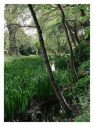 Honeywood Walk by markmurton