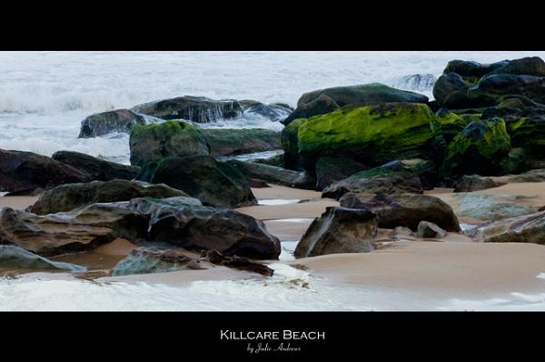 Killcare Beach - Mossy Rocks by Jodes