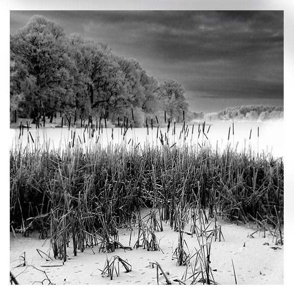 The Lake by NikonNovice
