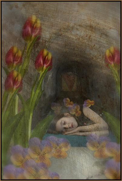 Sleeping Beauty by MickyMc
