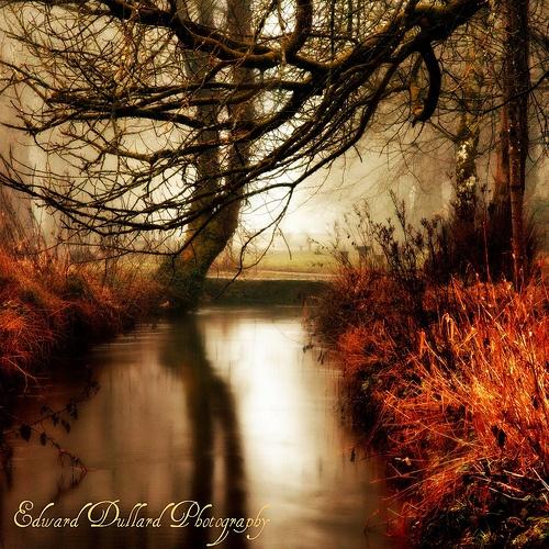 A GOLDEN WINTER\'S EVE by EDWARDDULLARD