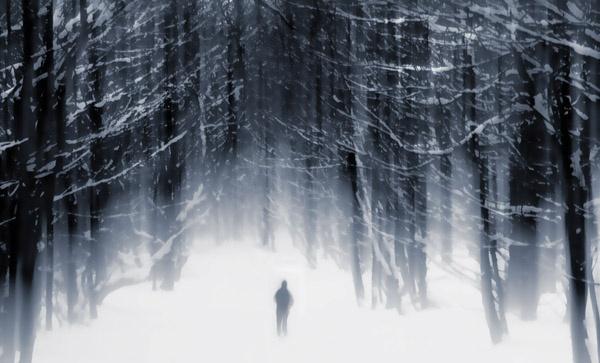 In the bleak wood by appysnappy