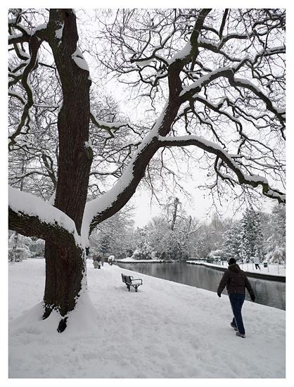 Grove Park, Carshalton by markmurton