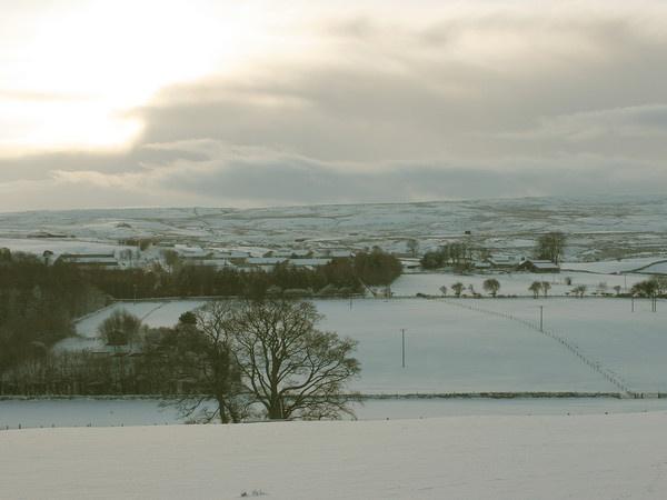 Snowscape by steveg