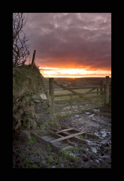 Exmoor Gate by nickhawk