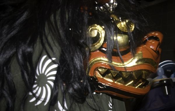 SHI-SHI-MAI LION by TimothyDMorton