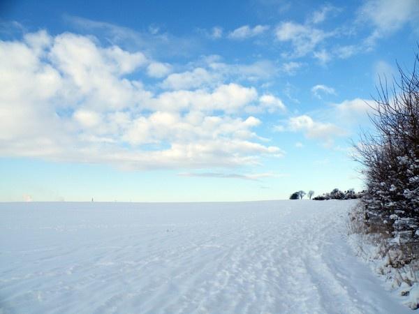 SNOWY DAY by Emmybear