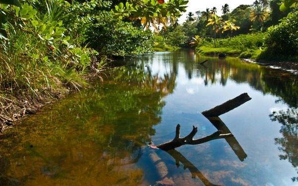 River by darrylhp