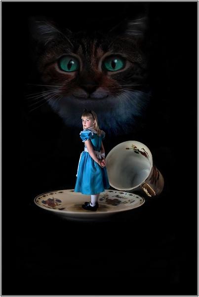 Alice by BilT