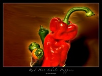 Red Hot Chili Peppers by woodgag