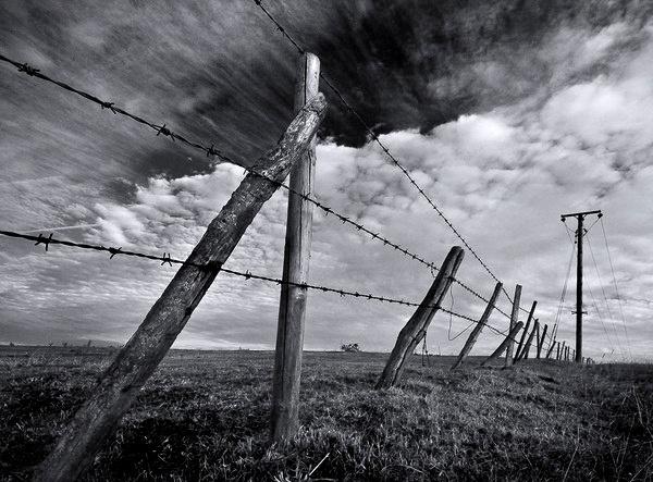 Barb wire and sky by derekhansen