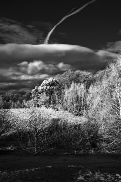 Rouken Glen by james_murray