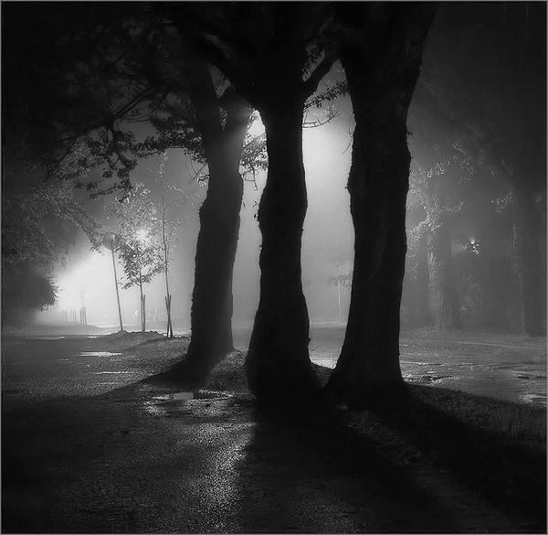 Broken Road, Rain, Night... by IgorDrankin