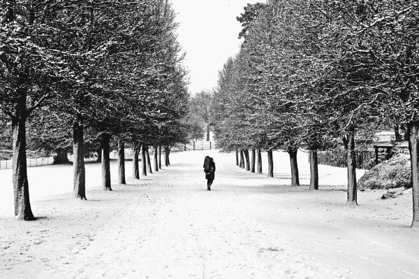 winter alone by seeky007